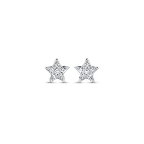 puces-etoiles-diamants